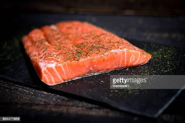 Raw salmon fillet on black slate