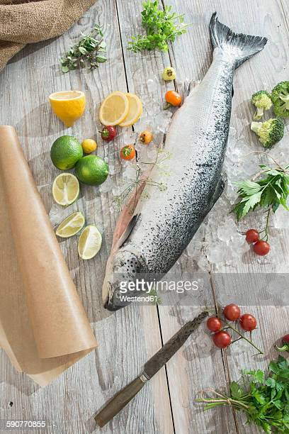 Raw salmon with ice and vegetables