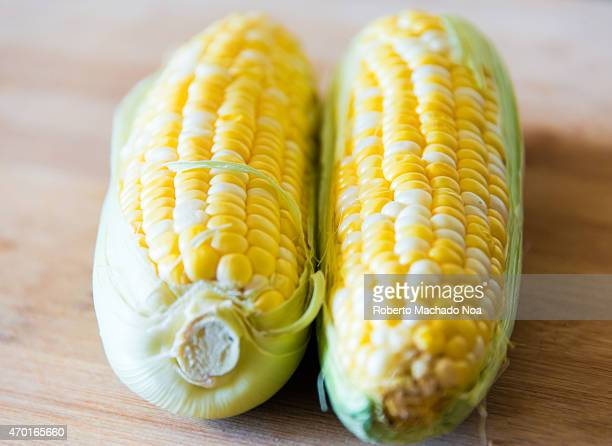 Raw sweet corn realistic approach to food ingredients Two raw corn cobs over a wooden surface with shallow depth of field and natural lightning
