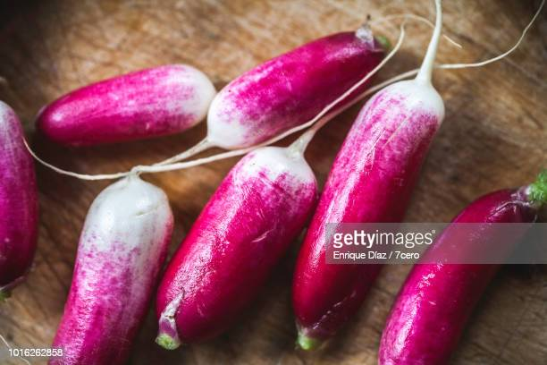 raw vegetable preparation, washed radishes - raw food diet stock pictures, royalty-free photos & images