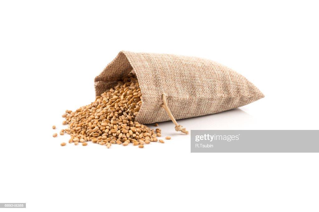 raw wheat grain in sack : Stock Photo