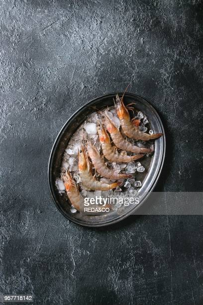 Raw whole fresh uncooked prawns shrimps on ice on vintage metal tray over black texture background Top view with copy space