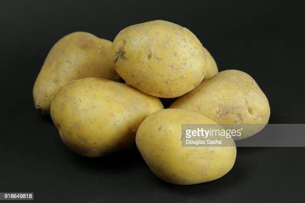 Raw Yellow Potatoes on a black background