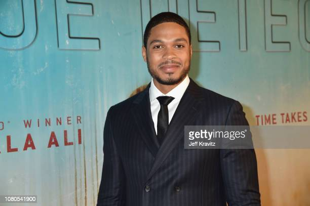 Ray Fisher attends the HBO premiere of True Detective Season 3 at DGA Theater on January 10, 2019 in Los Angeles, California.