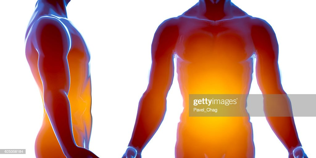 X Ray Human Male Body Anatomy Concept 3d Render Stock Photo Getty