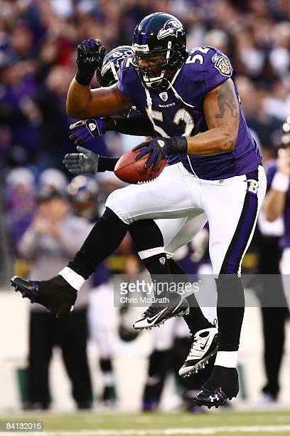 Ray Lewis of the Baltimore Ravens celebrates recovering the ball against the Jacksonville Jaguars during the game on December 28, 2008 at M&T Bank...