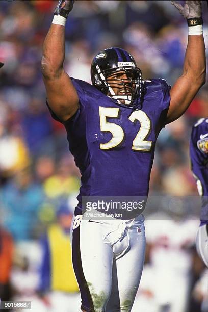 Ray Lewis of the Baltimore Ravens looks on before a NFL football game against the Cincinnati Bengals on November 3 1996 at Memorial Stadium in...