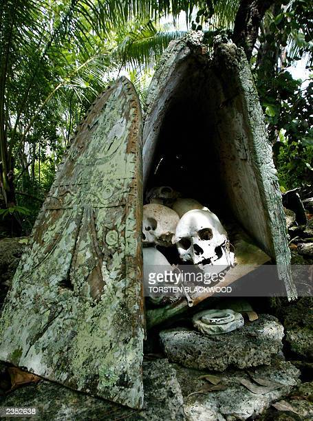 Ray of sunlight falls on the skull of Chief Hingava in the sacred burial site of Skull Island in Vona Vona Lagoon in the remote Western Province of...