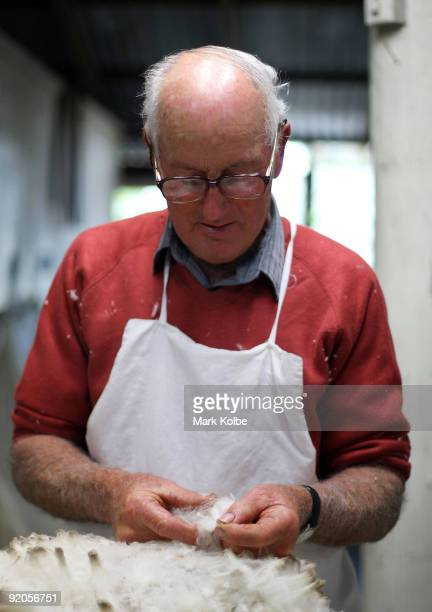 Ray Williams classes the wool during spring shearing at Cherry Hill Pastoral Company property on October 19 2009 in Uralla Australia Shearing in...