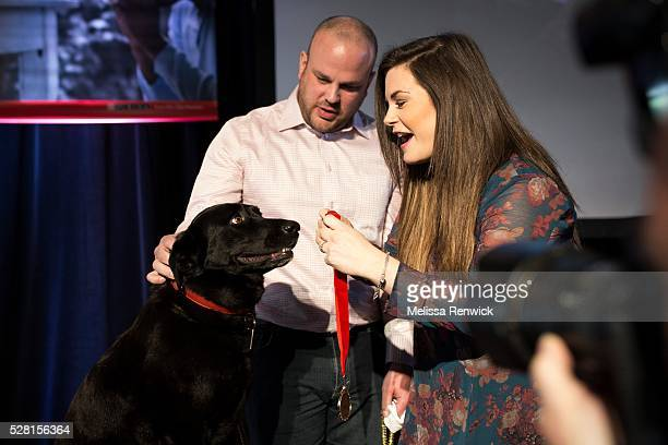 TORONTO ON MAY 03 Raya is given a medal after being added to the Purina Animal Hall of Fame at the 48th annual ceremony in Toronto The black labrador...