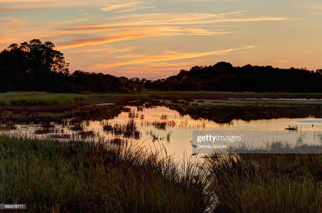 Raymond pool sunset : Stock Photo