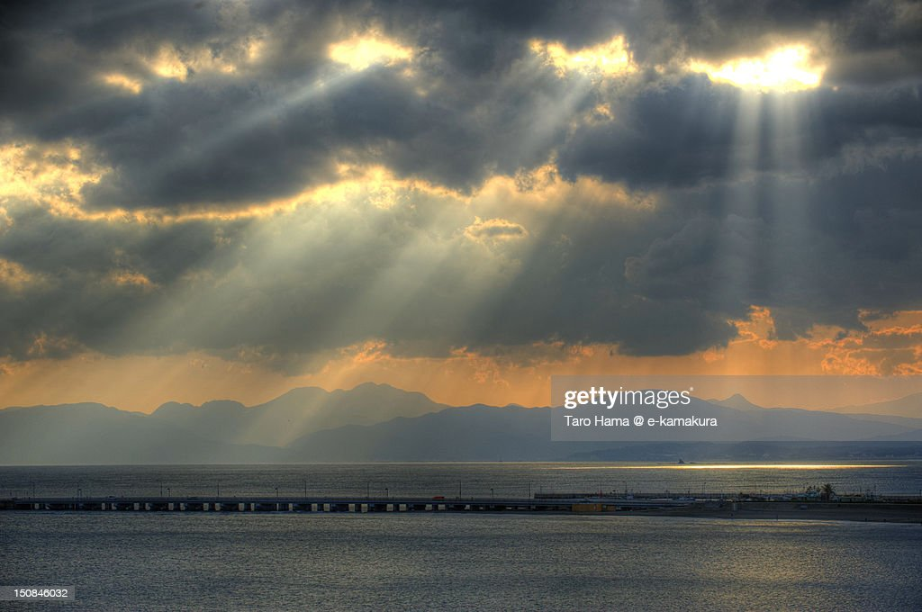 Rays of sunlight : Foto de stock