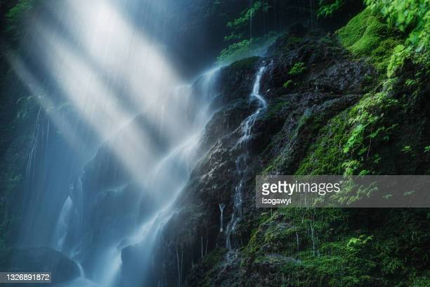 rays of sunlight shine on waterfalls with mossy rocks - isogawyi stock pictures, royalty-free photos & images