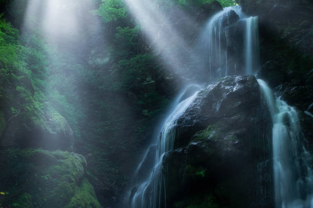 Rays Of Sunlight Through Trees With Waterfalls