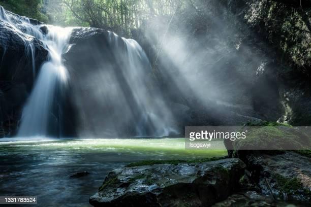 rays of sunlight through waterfalls - isogawyi stock-fotos und bilder