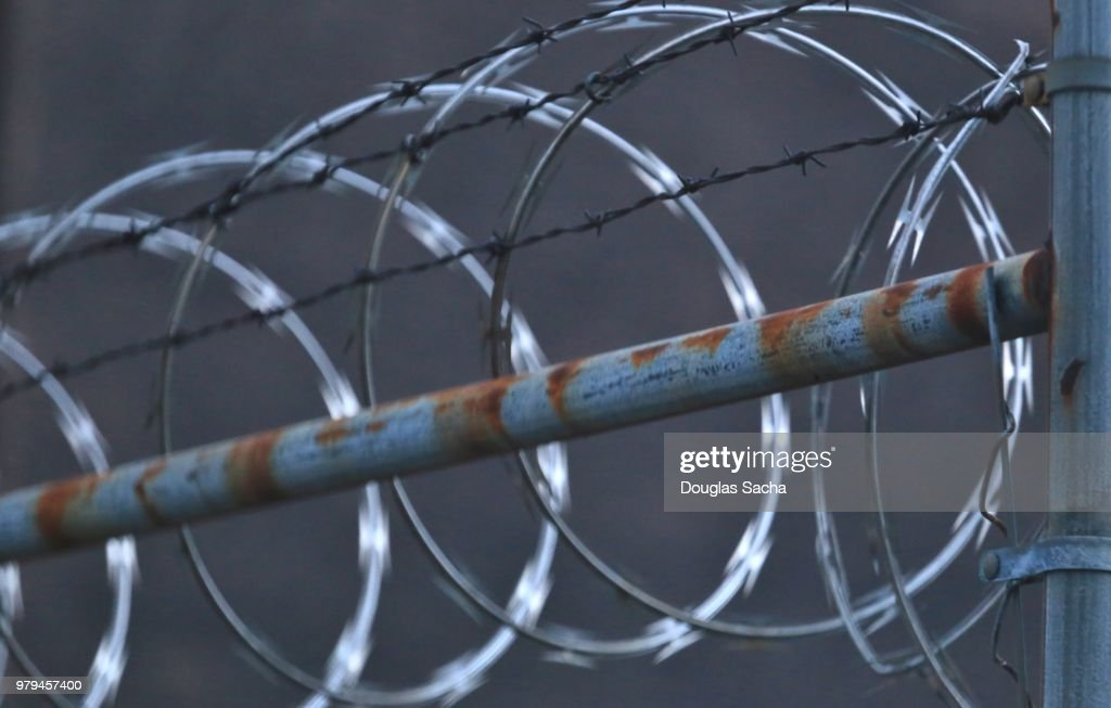 Razor Sharp Coil Of Concertina Wire Almong The Barbed Wire Fence ...