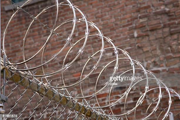 Razor wire atop a fence
