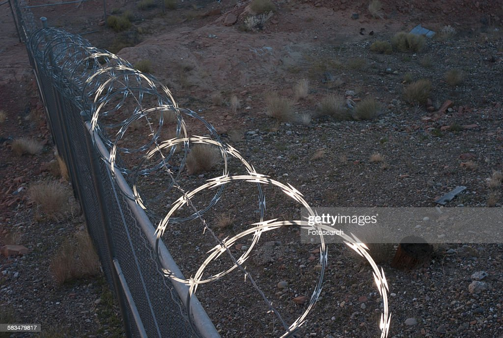 Razor wire on a fence on the coast : Stock Photo