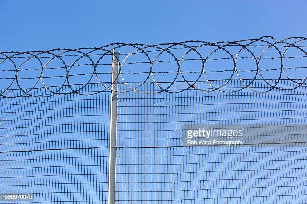 Razor wire topped fence