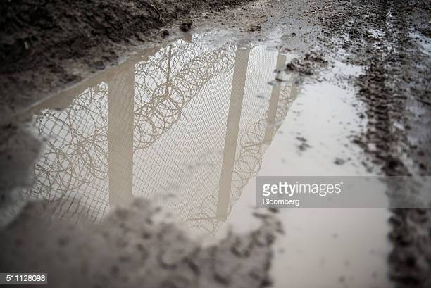 A razor wired topped security fence is reflected in a puddle on the HungarianSerbian border near Roszke Hungary on Wednesday Feb 17 2016 The European...