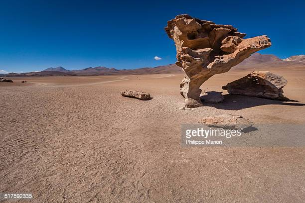 Árbol de Piedra rock in the altiplano of Bolivia