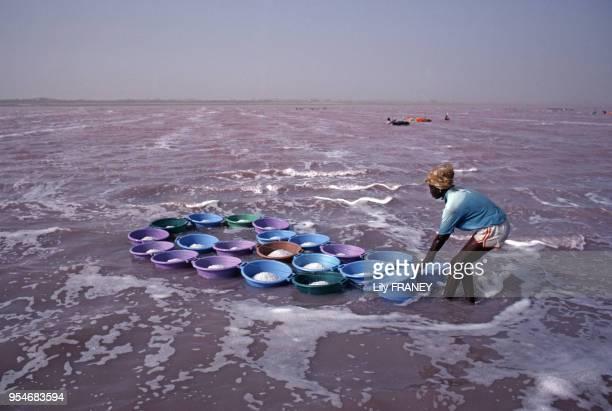 Récolteuse de sel sur le lac Rose au Sénégal, en avril 1987.