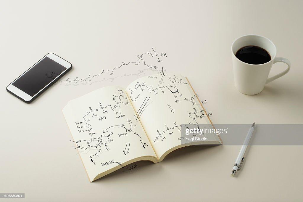 Reaction formula of metabolism : Stock Photo