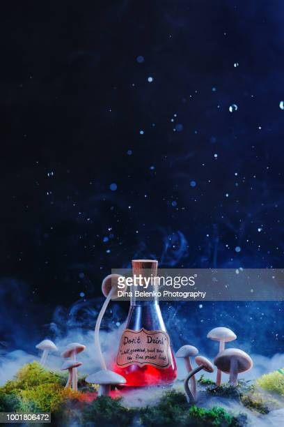 read the fine print caution on a magical potion with mushrooms, moss, and dew. modern witchcraft concept. red potion on a dark background. - potion stock photos and pictures