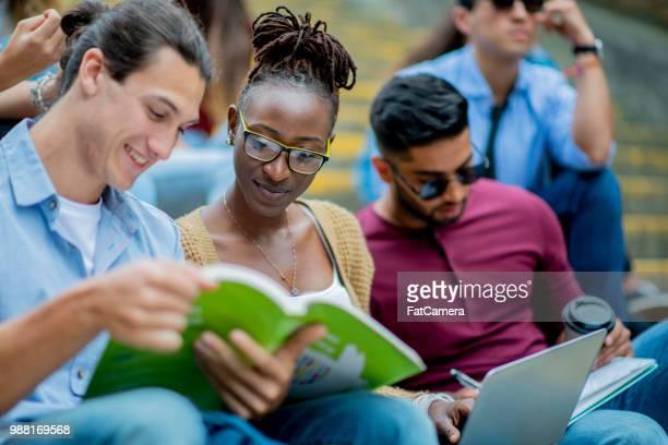 Ein Lehrbuch zu lesen