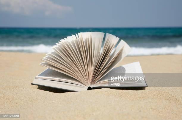 読書で、砂浜のビーチ