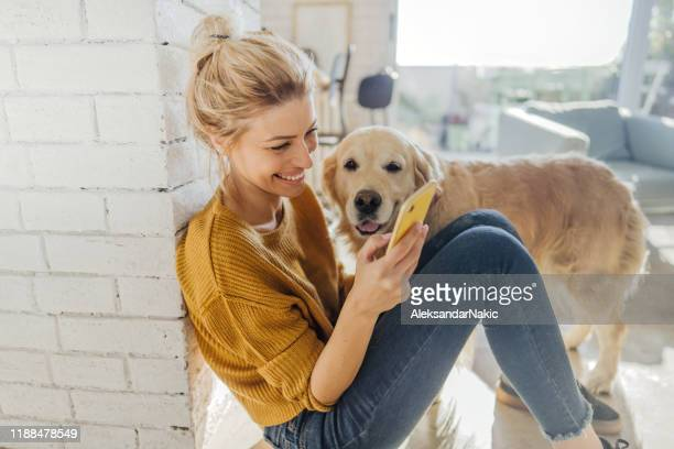 reading morning news online with a company - young women stock pictures, royalty-free photos & images