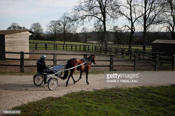Readly Express and his trainer Timo Nurmos are seen ahead of a training session one week before the Prix d'Amerique on January 18 2019 in Mortrée...