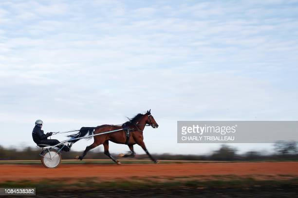 Readly Express is pictured during a training session with his trainer Timo Nurmos one week before the Prix d'Amerique on January 18 2019 in Mortrée...