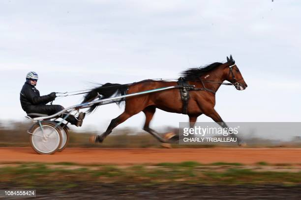 Readly Express is pictured during a training session with his trainer Timo Nurmos on January 18 2019 in Mortrée northwestern France
