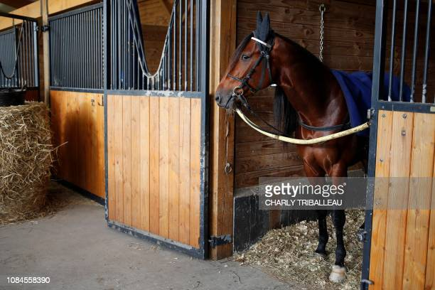 Readly Express is prepared before a training session on January 18 2019 in Mortrée northwestern France