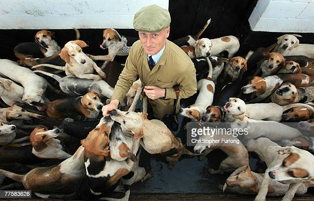 Ready and raring to go the hounds of The Cheshire Forest Hunt wait for Huntsman Andrew German to exercise them in preparation for the start of the...