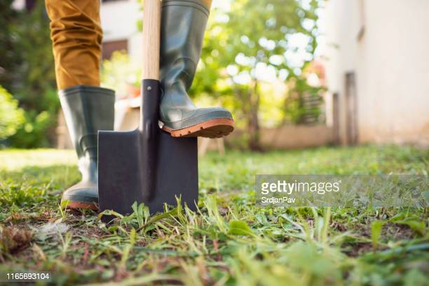 ready for gardening - digging stock pictures, royalty-free photos & images