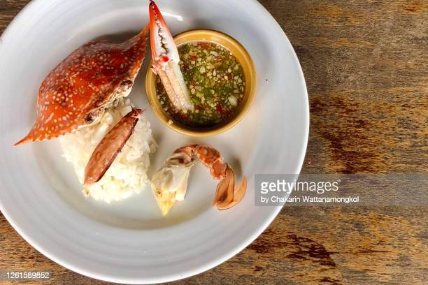 ready to eat blue swimmer crab, crabmeat topped on steamed rice served with spicy seafood dip in a white plate decorated with crab shell. - blue crab stock pictures, royalty-free photos & images