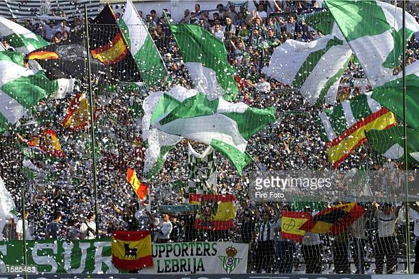 Real Betis fans wave flags during the Real Betis v Malaga La Liga match played at the Ramon Sanchez Pizjuan Stadium on November 3, 2002 in Seville,...