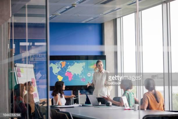 echte boord kamer presentatie, vrouw. - real people stockfoto's en -beelden
