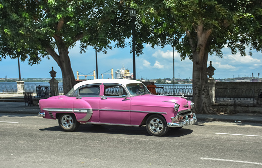 Real Cuban city life image with a pink vintage car riding by Havana's harbor - gettyimageskorea