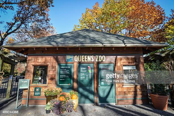 Real estate of Queens Zoo in Flushing MeadowsCorona Park in Queens on Wednesday November 13 2013 A bear named Bouba has been brought from a French...