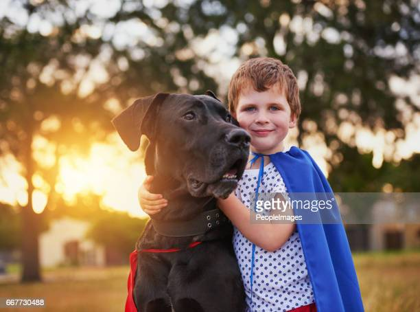 real heroes never stand alone - great dane stock pictures, royalty-free photos & images