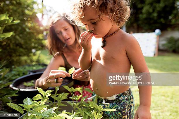 Real mother and child picking herbs in garden