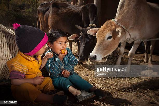 Real people from rural India: Farmer's children eating tomato