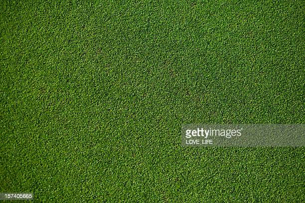 real putting green - grass stock pictures, royalty-free photos & images