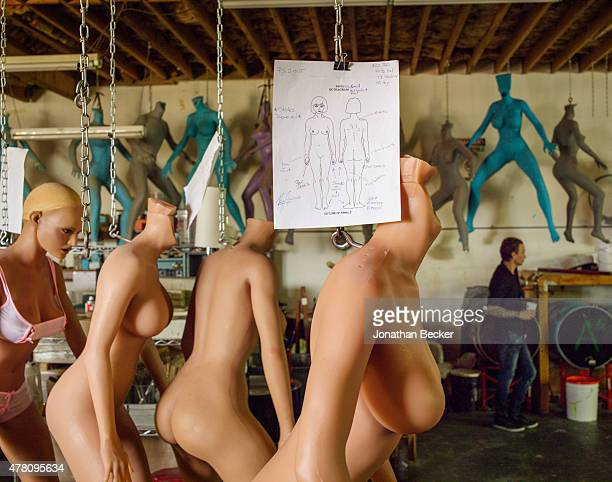 RealDolls are photographed for Vanity Fair Magazine on February 19 2015 in San Diego California RealDolls are made to client's specifications from...