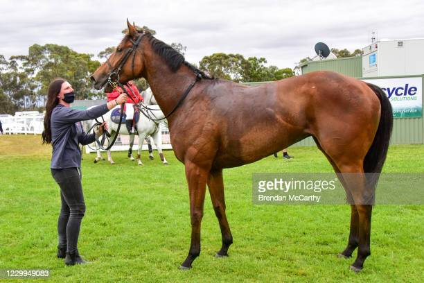 Realeza after winning the PETstock Stawell Maiden Plate at Stawell Racecourse on December 05, 2020 in Stawell, Australia.