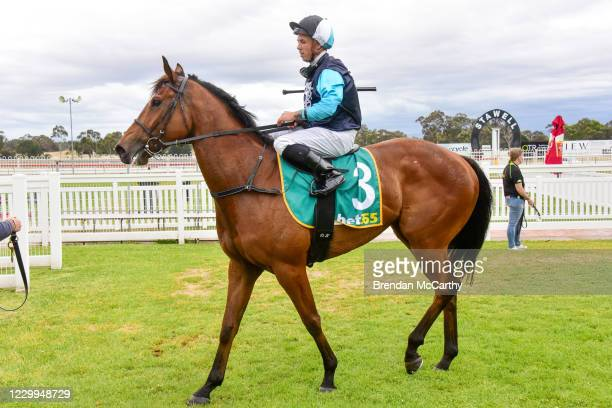 Realeza ridden by Dean Holland returns to the mounting yard after winning the PETstock Stawell Maiden Plate at Stawell Racecourse on December 05,...