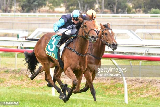 Realeza ridden by Dean Holland wins the PETstock Stawell Maiden Plate at Stawell Racecourse on December 05, 2020 in Stawell, Australia.